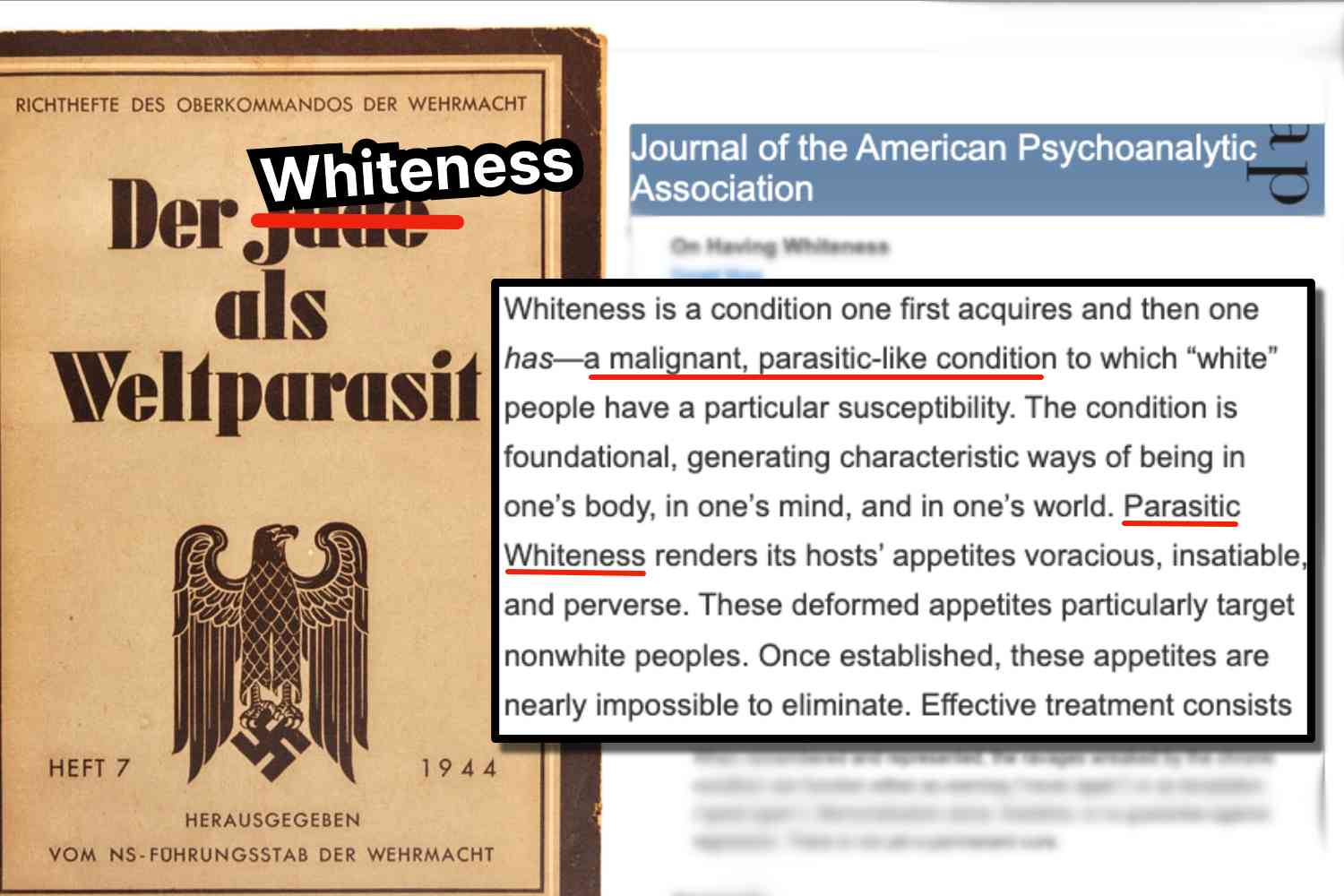 """Whiteness is a """"parasitic condition"""" that has no """"permanent cure,"""" according to a new paper in the Journal of the American Psychoanalytic Association"""